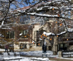 Campus Snow Photo