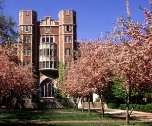 Cary Quadrangle South