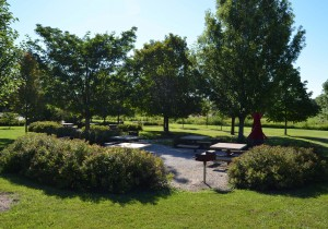 Pickett Park - Picnic Tables