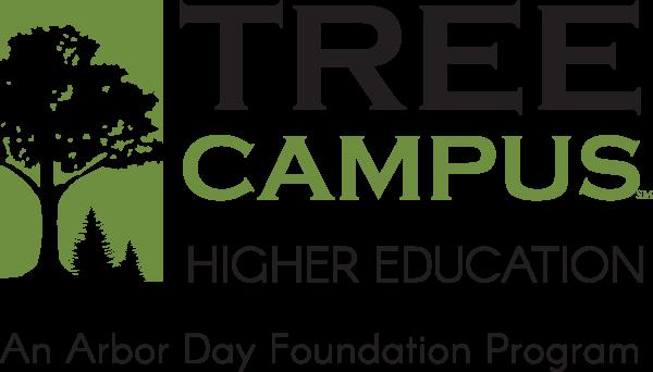 logo-tree-campus-higher-education-landscape